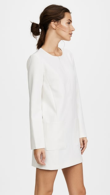 Elizabeth and James Kyle Full Sleeved Mini Dress with Zip Placket