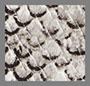 蟒蛇皮印花