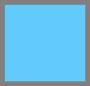 Starling Bleu