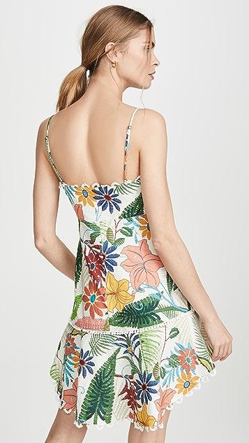 FARM Rio Vintage Garden Mini Dress