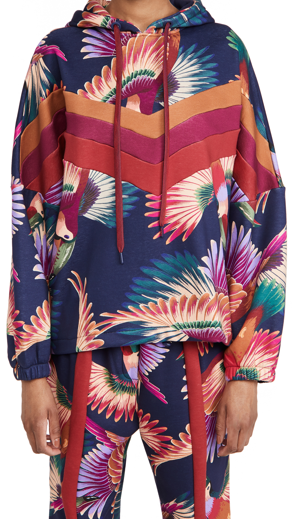 FARM Rio Colorful Toucans Sweatshirt