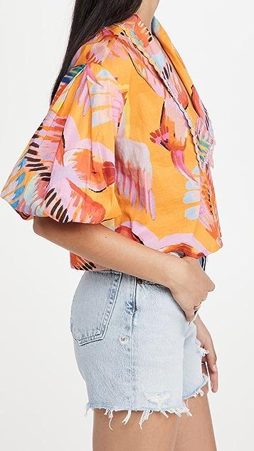 Farm Rio Neon Macaws 衣领女式衬衫