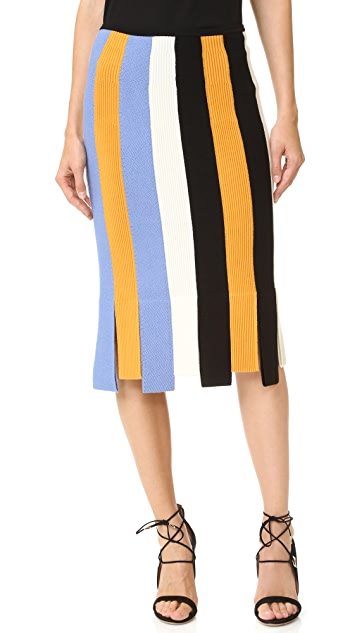 Salvatore Ferragamo Car Wash Skirt