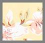 Pomeline 花卉印花