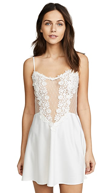 Flora Nikrooz Charmeuse Chemise with Lace