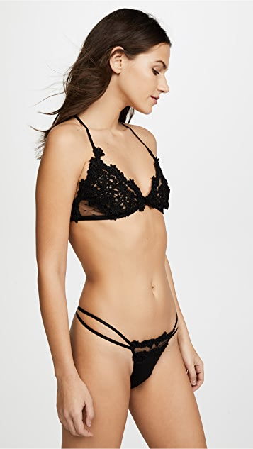 Flora Nikrooz Dotted Netted Bra with Venise Lace