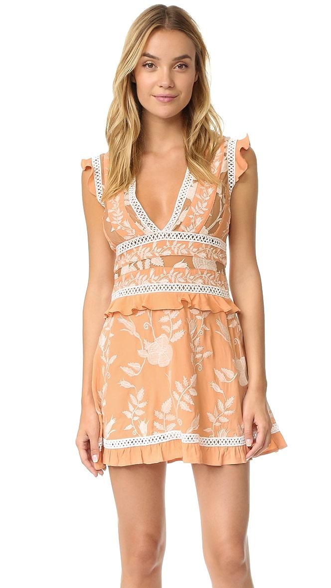 427bc437565 For Love   Lemons Mia Paneled Mini Dress