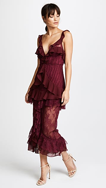 For Love & Lemons Daphne Lace Dress