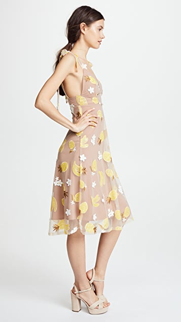 For Love & Lemons Fruitpunch Sequin Midi Dress