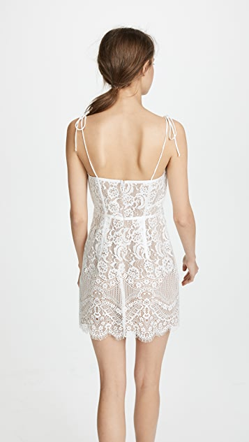 For Love & Lemons Tati Lace Corset Dress