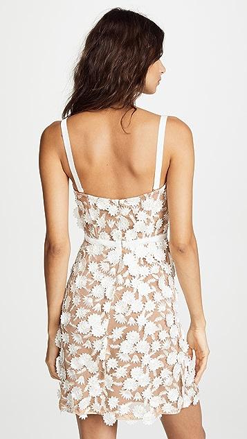 For Love & Lemons Beatrice Mini Dress