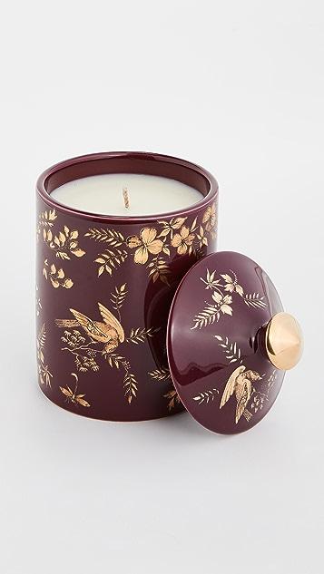 Fornasetti Ароматическая свеча Fornasetti Coromandel