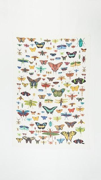 Franco Ferrari Butterfly Scarf