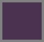 Violet Visions 组合