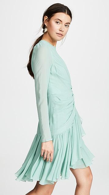 Giambattista Valli Cinched Waist Ruffle Dress