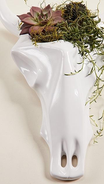 Gift Boutique Skull Planter