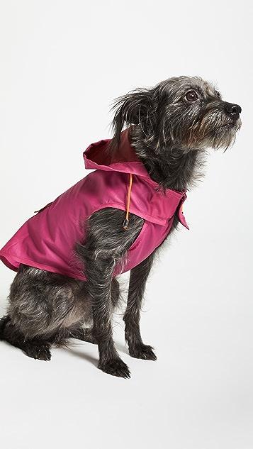 Gift Boutique Pet's Neon Anorak