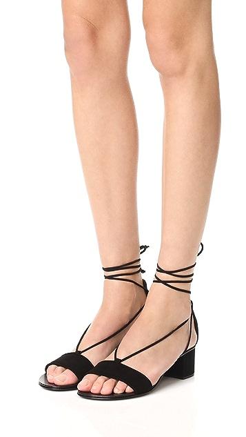 Giuseppe Zanotti Block Heel Sandals