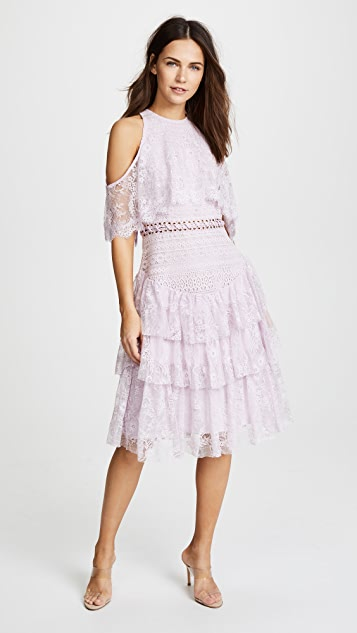 Glamorous True Decadence Lace Dress