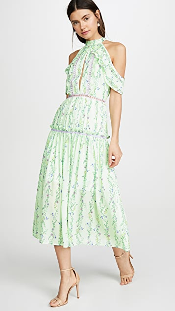 Glamorous Apple Linear Floral Crepe Dress