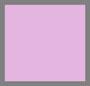 розовая кэтлея