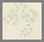 кремовые кентерберийские цветы