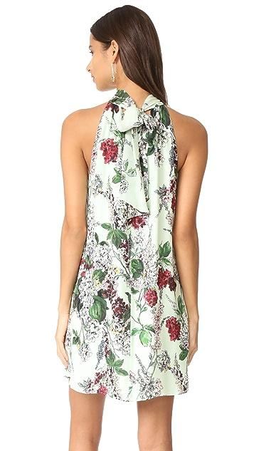 Haute Hippie Morrison Dress