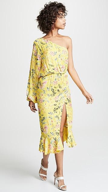 Hemant and Nandita Eden Dress