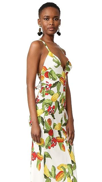 Isolda Tilly Dress