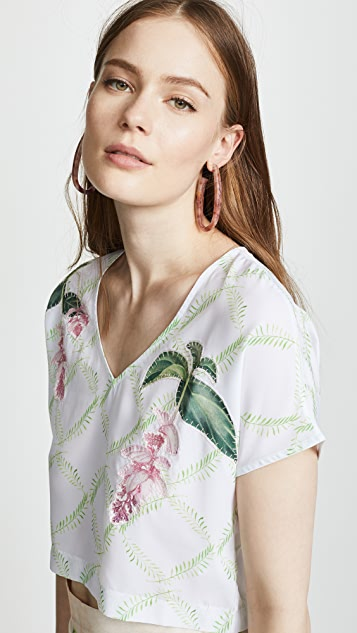 Isolda Nerine Top