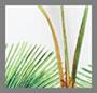 White Palm Print