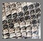 Grey Brown Snake