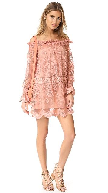 Jen's Pirate Booty Wisdom Mini Dress