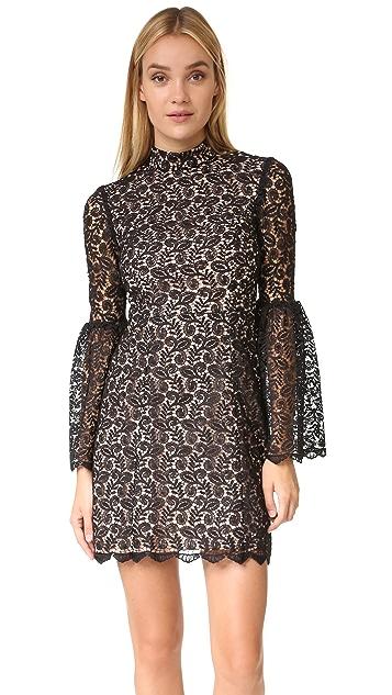 Jill Jill Stuart Mock Neck Lace Dress