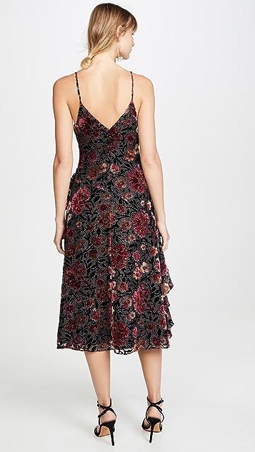 Jill Jill Stuart Velvet Devore Dress