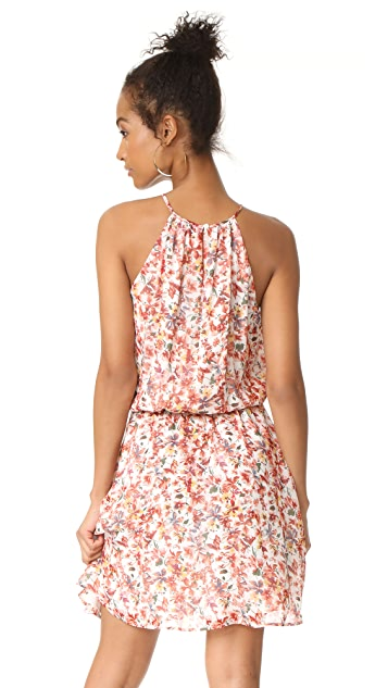 Joie Reinelde Dress