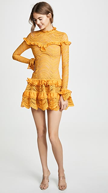 Jonathan Simkhai Chiffon Lace Ruffle Dress