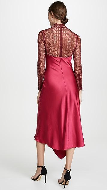 Jonathan Simkhai 蕾丝罩层连衣裙