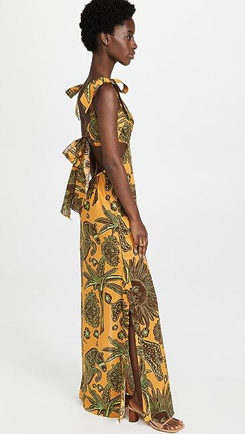 Johanna Ortiz Solar Histrico Maxi Dress