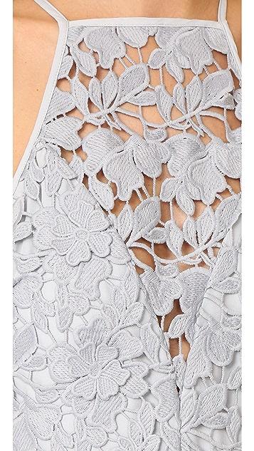 Keepsake Acoustic Lace Dress