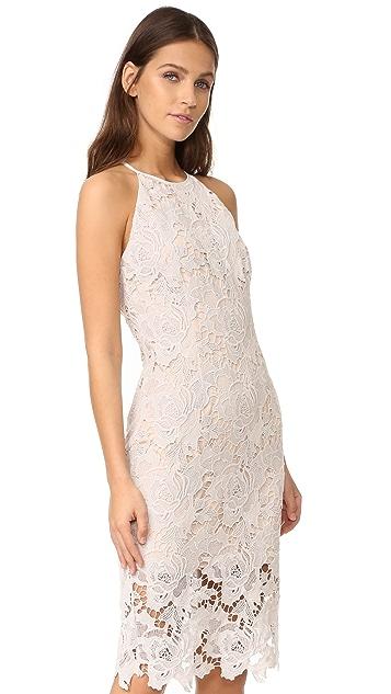 Keepsake Lonely Lover Lace Dress