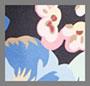 Black Hydrangea