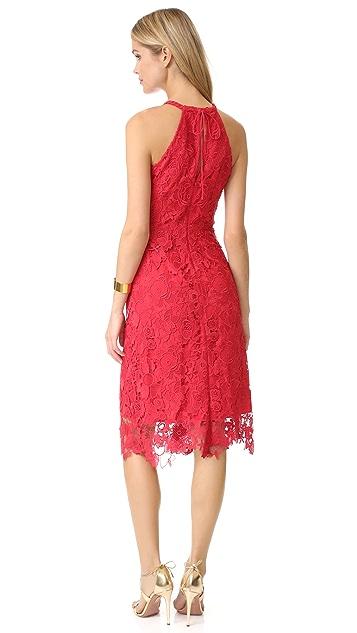 Kobi Halperin Jade Dress