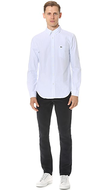 Lacoste Bengal Stripe Button Down Oxford Shirt