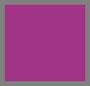 Urchin Purple