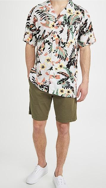 Levi's x Chino Taper Shorts