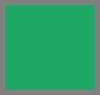 Блестящий зеленый