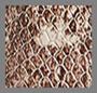 西班牙蛇纹