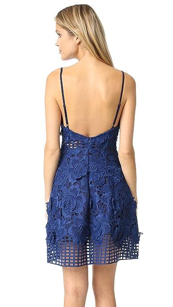 Lovers + Friends Bellini Dress