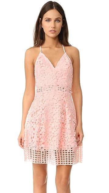 b01bfe13318 Lovers + Friends Bellini Dress ...